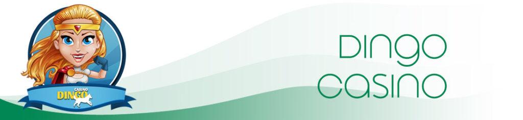 rapport de test de casino dingo OpenAndroidAlliance