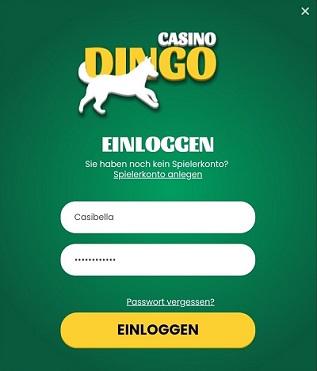 connexion au casino dingo