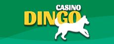 logo de casino dingo